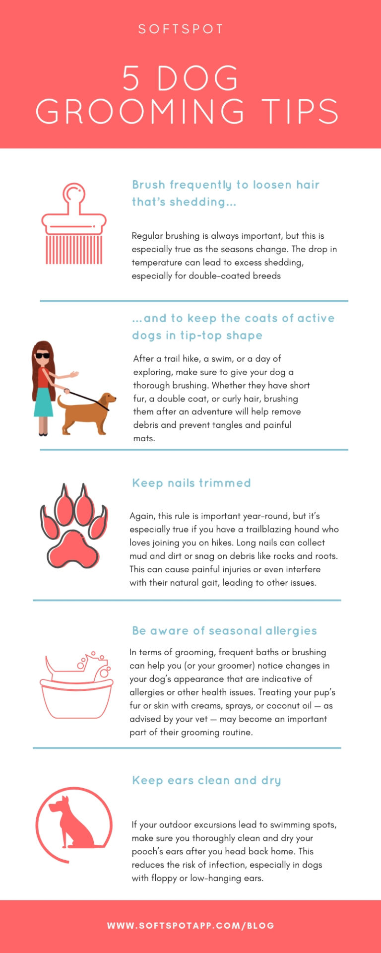 5 Dog Grooming Tips For Fall - SoftSpot®